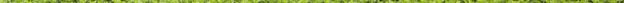 green sliver
